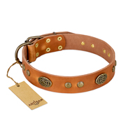 """Sun Beams"" FDT Artisan Tan Leather Pitbull Collar with Decorations"