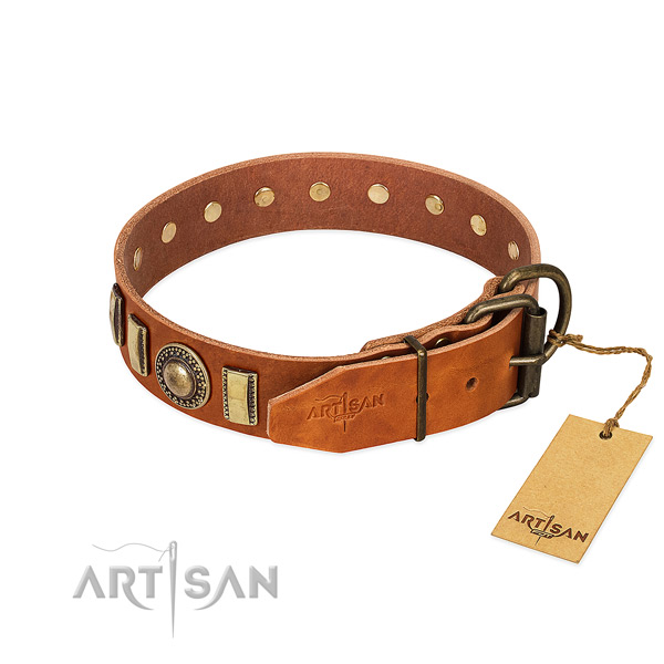 Incredible full grain leather dog collar with durable buckle