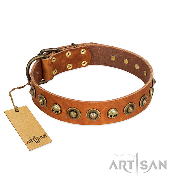 Full grain genuine leather collar with designer studs for your dog