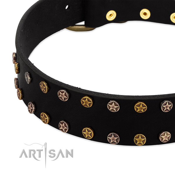 Inimitable adornments on natural leather collar for your doggie