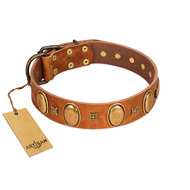 """Glossy Autumn"" Designer Handmade FDT Artisan Tan Leather Pitbull Collar with Ovals and Studs"