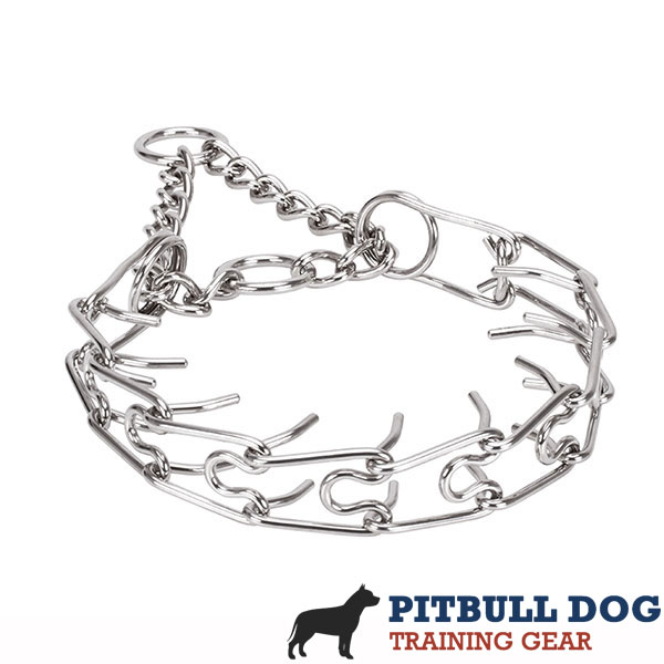 Corrosion proof dog pinch collar with stainless steel removable links