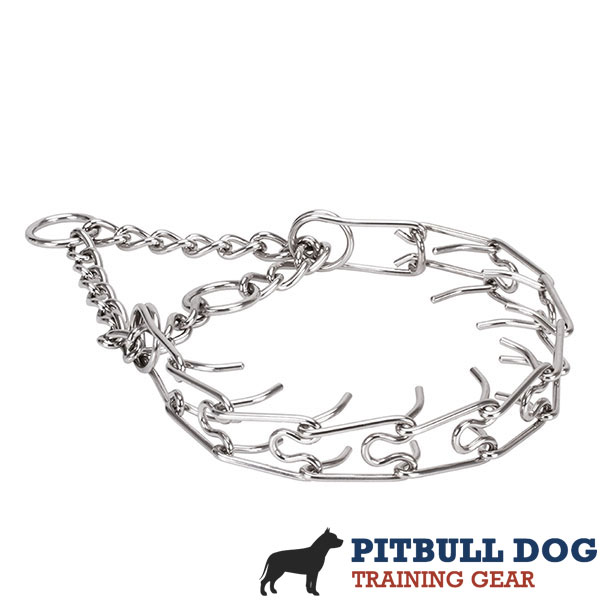Rust resistant stainless steel prong collar for poorly behaved canines