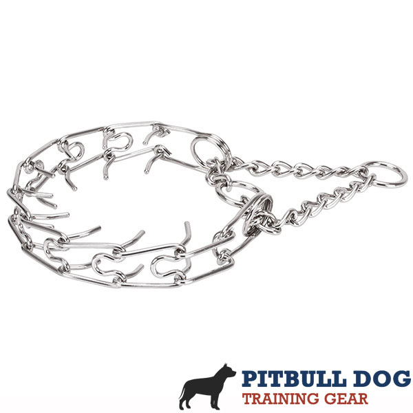 Reliable stainless steel dog pinch collar for large dogs