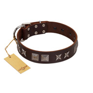 """Needle Stories"" Modern FDT Artisan Brown Leather Pitbull Collar with Square Engraved Plates and Four-Point Stars"