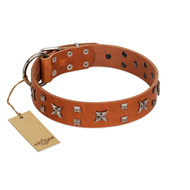 """Faraway Galaxy"" FDT Artisan Tan Leather Pitbull Collar Adorned with Stars and Squares"