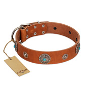 """Marine Antiques"" Handmade FDT Artisan Tan Leather Pitbull Collar with Blue Stones"