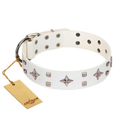 """The Milky Way"" FDT Artisan White Leather Pitbull Collar Adorned with Stars and Tiny Squares"