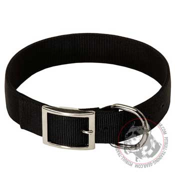 American Pit Bull Terrier Collar Nylon with Nickel Fittings