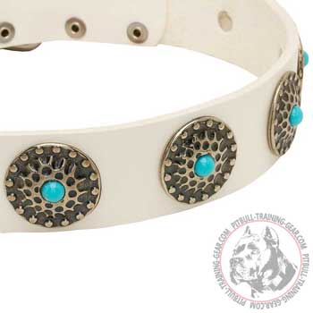 Gorgeous Decorations on Leather Pitbull Collar