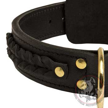Leather Dog Collar with brass D-ring