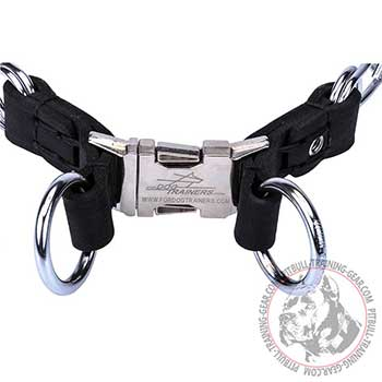 Steel Chrome Plated Rings of Pitbull Dog Pinch Collar