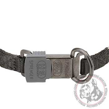 Quality Click Lock Buckle of Herm Sprenger Dog Collar