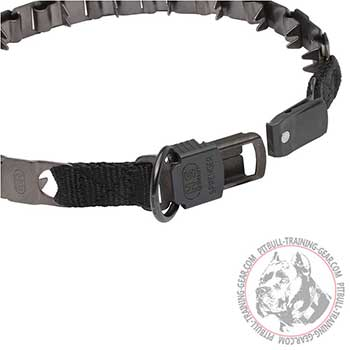 Plastic Click Lock Buckle of Pitbull Training Collar