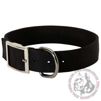 Durable D-Ring on Pit Bull Collar for Leash Attachment
