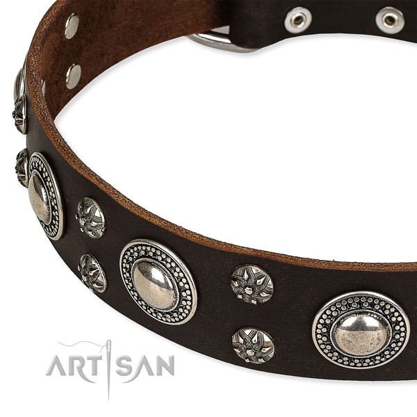 Snugly fitted leather dog collar with almost unbreakable chrome plated hardware