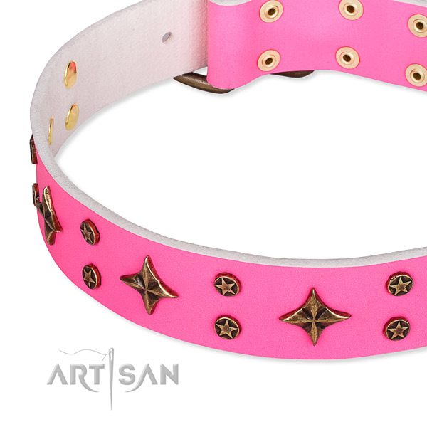 Full grain natural leather dog collar with significant decorations