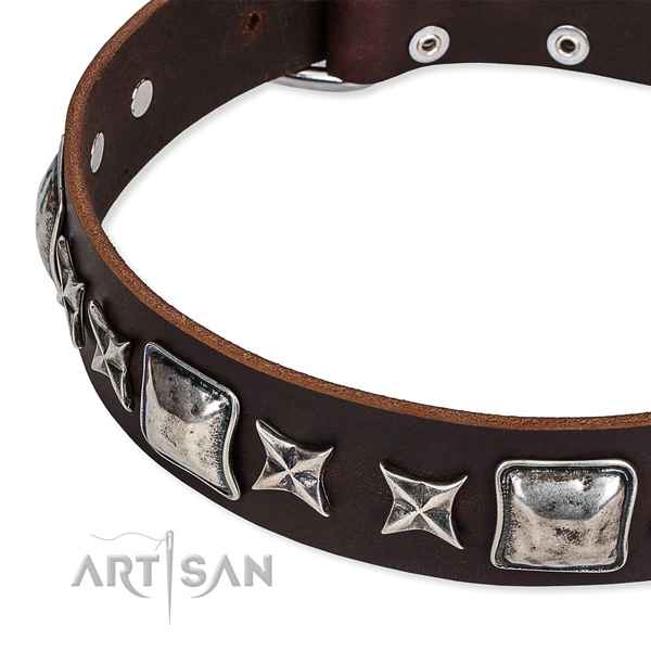 Full grain leather dog collar with studs for handy use