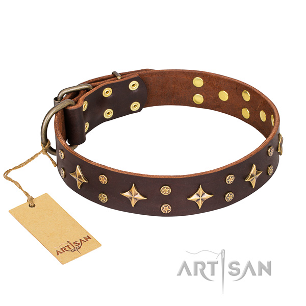 Extraordinary full grain natural leather dog collar for everyday walking