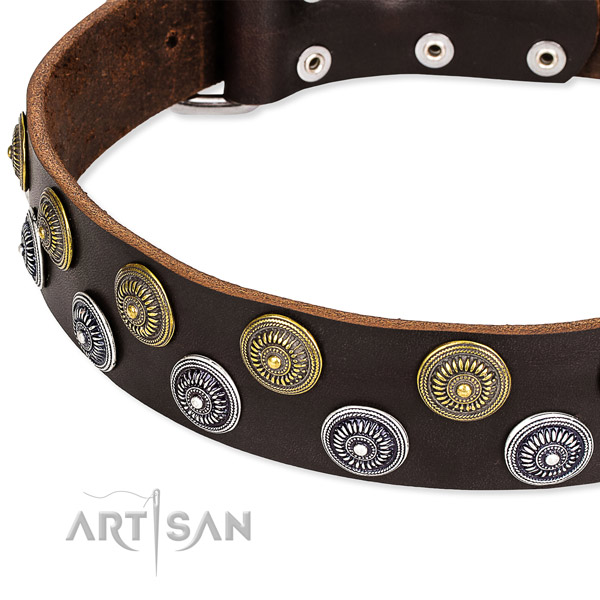 Genuine leather dog collar with unique embellishments
