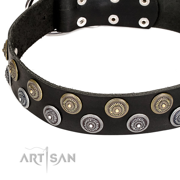 Genuine leather dog collar with awesome decorations