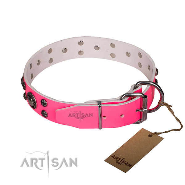 Daily use full grain leather collar with reliable buckle and D-ring