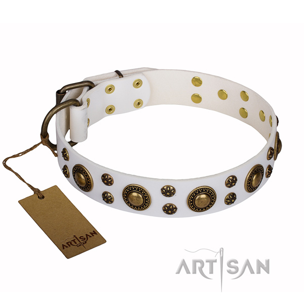 Walking full grain genuine leather collar with decorations for your canine