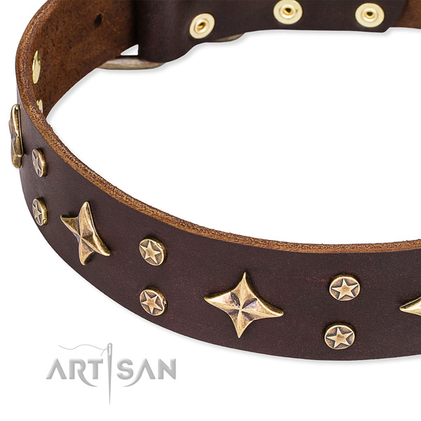 Full grain genuine leather dog collar with trendy embellishments