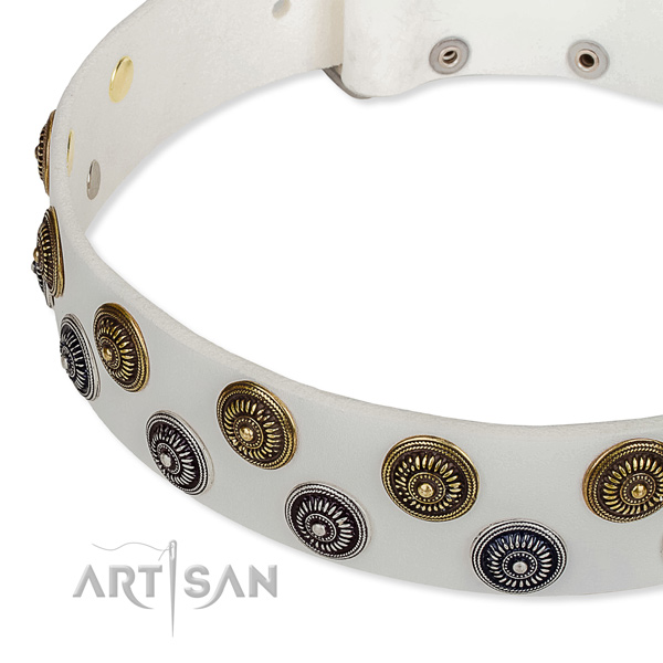 Genuine leather dog collar with stunning adornments