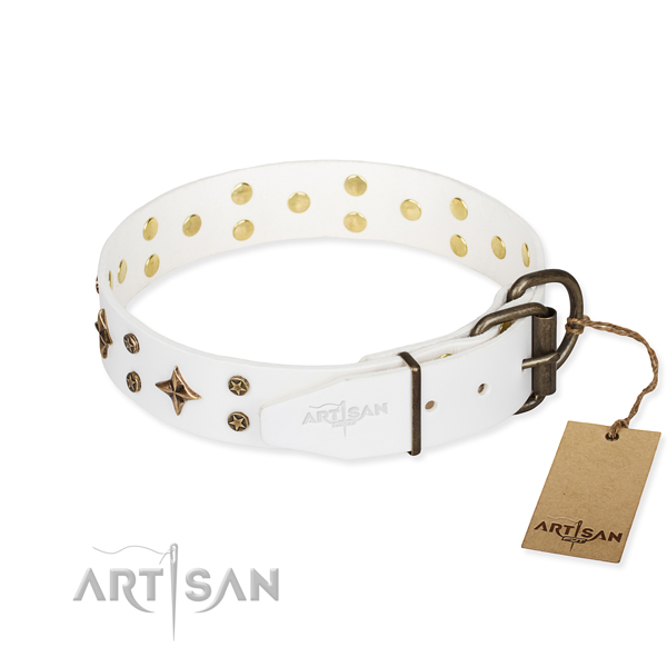 Stylish walking genuine leather collar with decorations for your pet