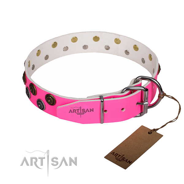 Daily walking full grain natural leather collar with adornments for your four-legged friend