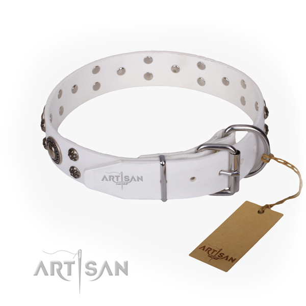 Stylish walking full grain natural leather collar with studs for your dog