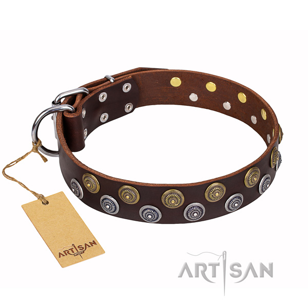 Daily walking full grain natural leather collar with adornments for your pet