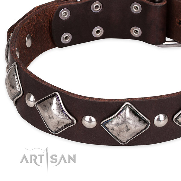 Easy to use leather dog collar with resistant chrome plated fittings