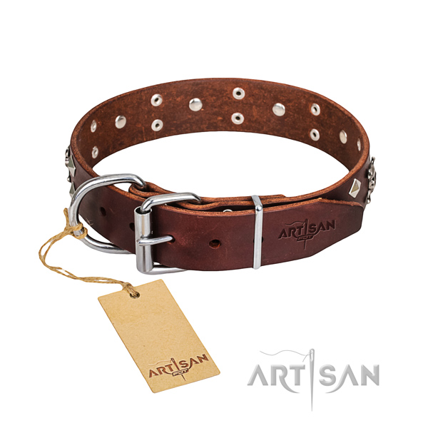 Reliable leather dog collar with non-rusting hardware