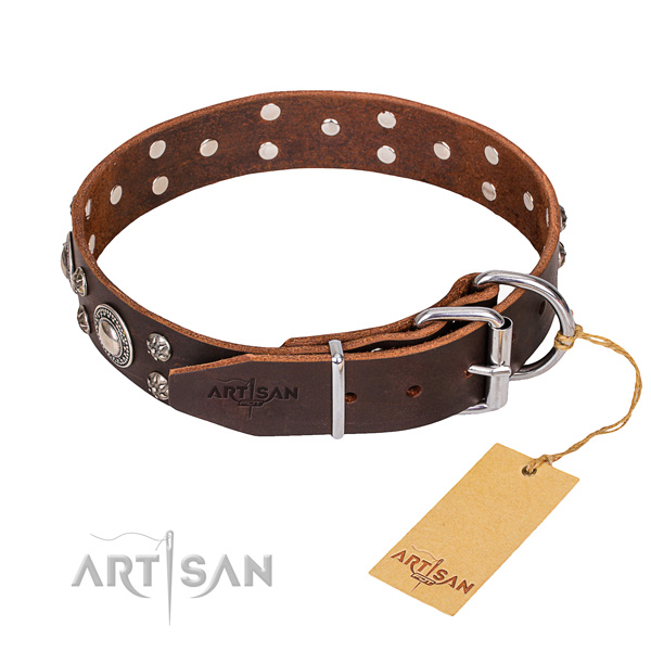 Fashionable leather collar for your favourite four-legged friend