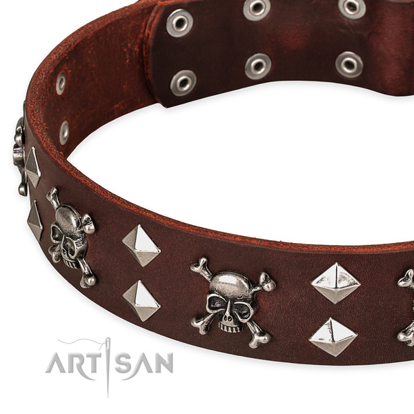 Genuine leather dog collar for reliable usage