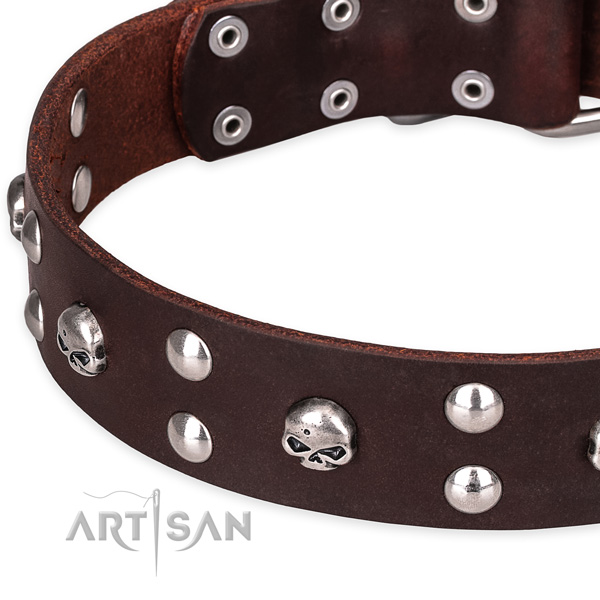 Casual style leather dog collar with luxurious studs