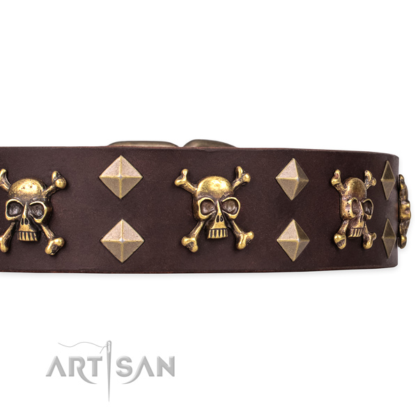 Top notch leather dog collar for reliable use