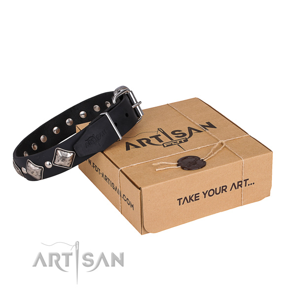 Day-to-day leather dog collar with elegant embellishments