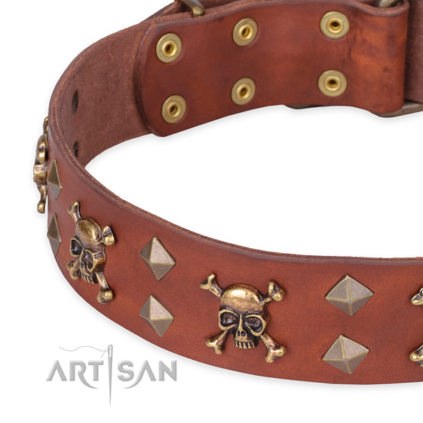 Daily leather dog collar with extraordinary decorations