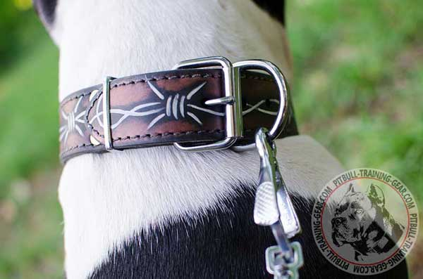 Durable Fittings on Leather Dog Collar for Pitbull