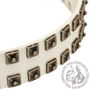 Nickel Studs on Wide Leather Pit Bull Collar for Walking White
