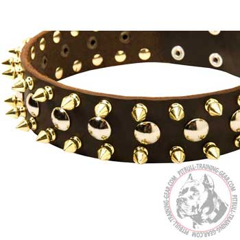 Leather Pit Bull Collar with Hand Set Studs and Spikes for Walking