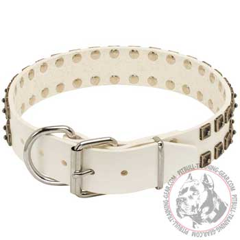White Leather Pit Bull Collar for Walking