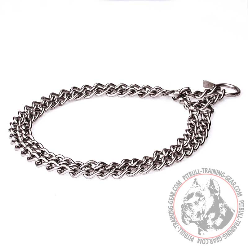 Pit Bull Dog Chain Collar | Stainless Steel Dog Collar