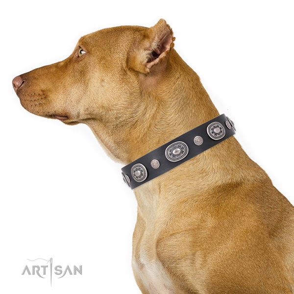 Reliable buckle and D-ring on full grain leather dog collar for daily walking