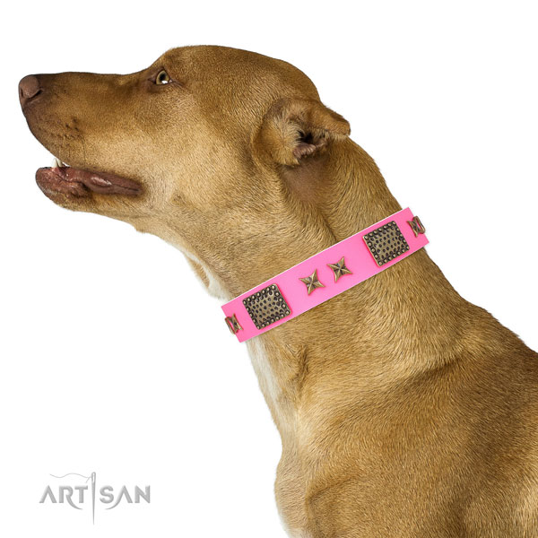 Unique adornments on handy use genuine leather dog collar