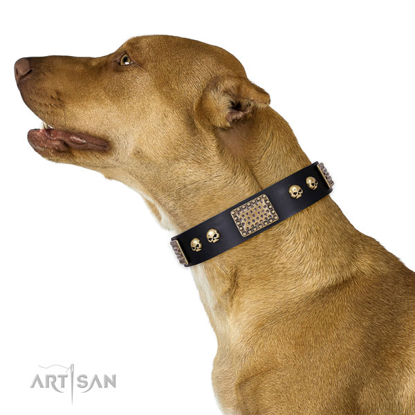 Rust resistant hardware on natural genuine leather dog collar for easy wearing