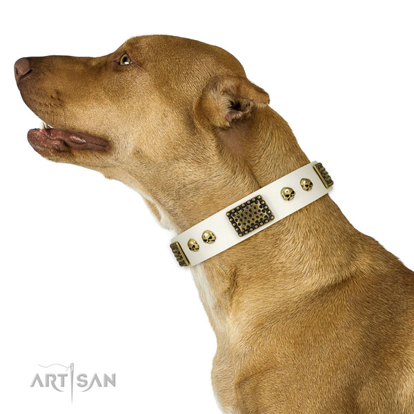 Rust resistant fittings on full grain genuine leather dog collar for easy wearing